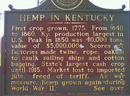 Kentucky Hemp Industry Brings Economic Renewal